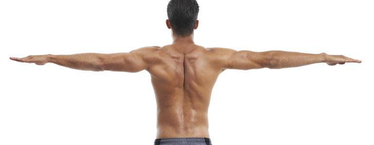 Trainingsplan Hardgainer Rücken