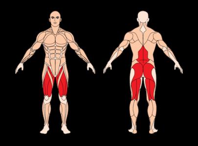 sumo-kreuzheben-muskelgruppen