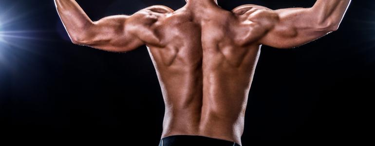 ᐅ Unterer Rücken Training - Top Übungen für Dein Rücken Workout!