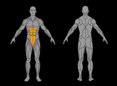 crunshes bauchmuskeln