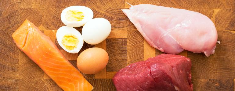 protein diaet