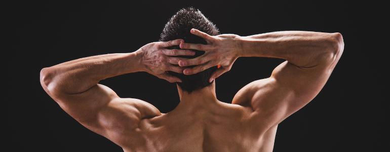hst-training-bodybuilding