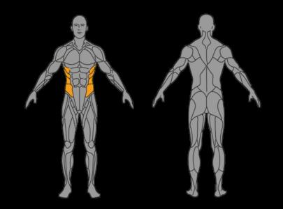 hueftrollen bauchmuskeln