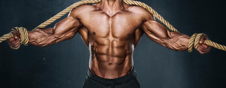 obere-brust-training