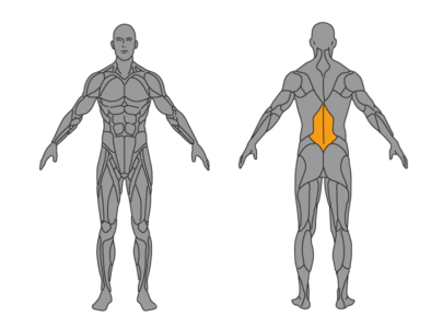 ᐅ Unteren Rücken dehnen - Übungen mit Bildern und Videos!